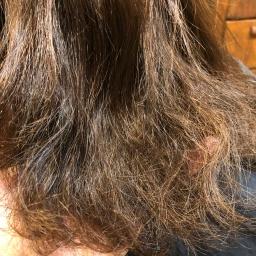 髪が傷むのは美容師のせい!?